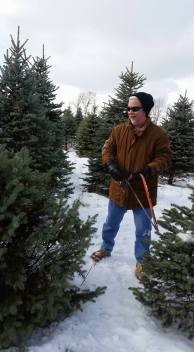 dad cutting down the christmas tree