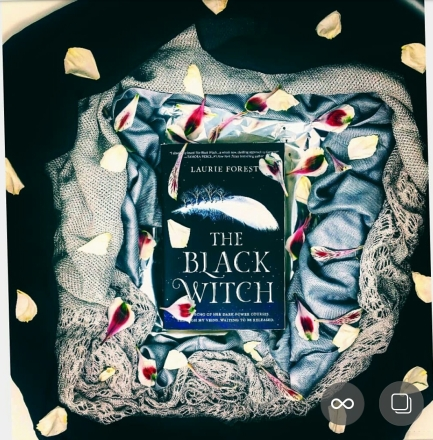 The Black Witch by Laurie Forest Instagram for Book Review