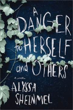 a danger to herself and others by alyssa b sheinmel