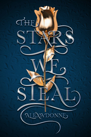 The Stars We Steal by Alexa Donne.jpg