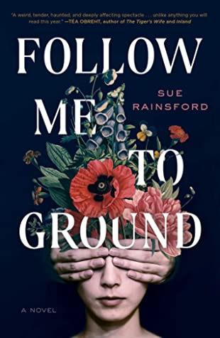 Follow Me to the Ground by Sue Rainsford